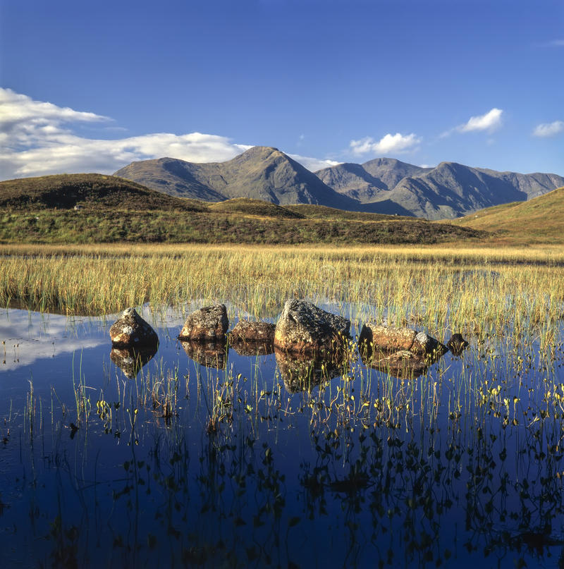 Download Rannoch Moor stock photo. Image of perthshire, wilderness - 40967224