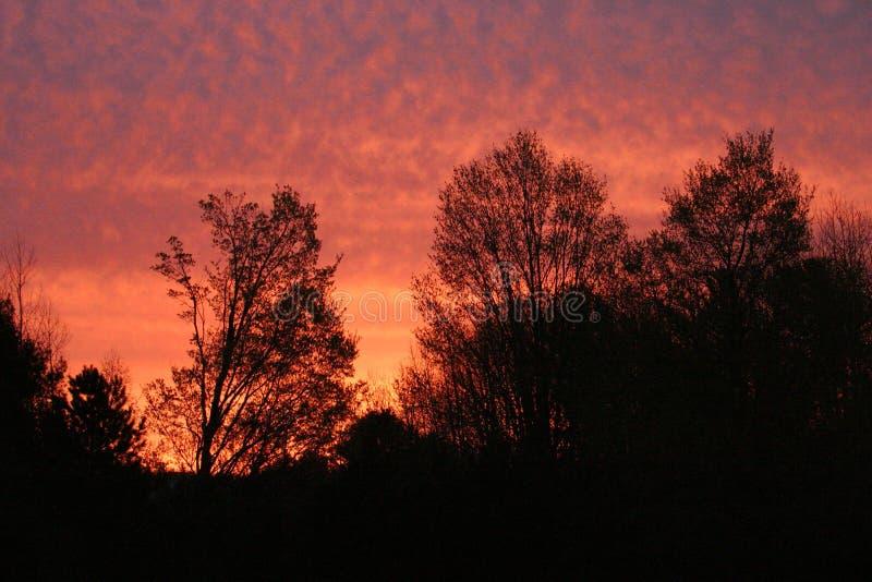 rano czerwone niebo obraz royalty free