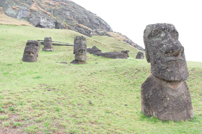 Rano Raraku`s many moai. Stone heads at Rano Raraku, the ancient quarry site on Easter Island Rapa Nui, Chile royalty free stock images