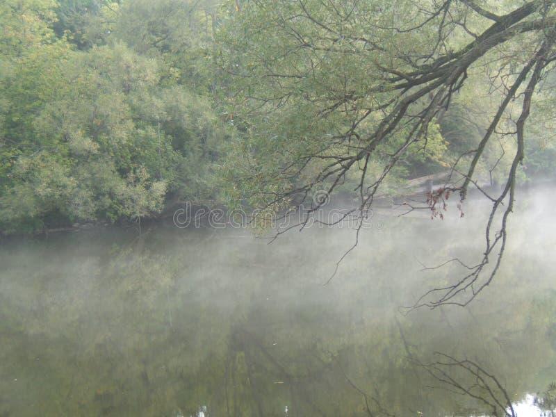 rano rzeki obraz stock