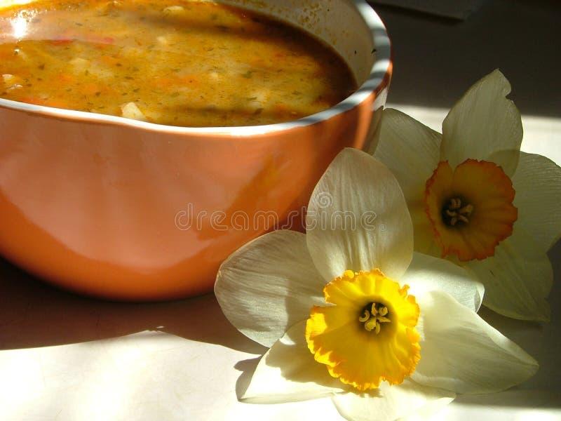 Download Rano zupy obraz stock. Obraz złożonej z kwiecisty, gęsty - 144021