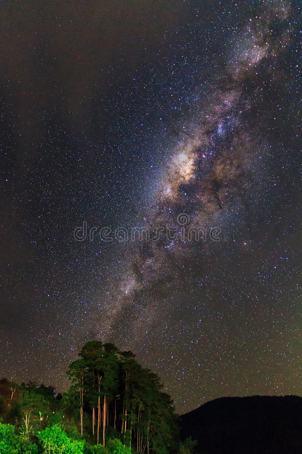Ranomafana milky way royalty free stock photo