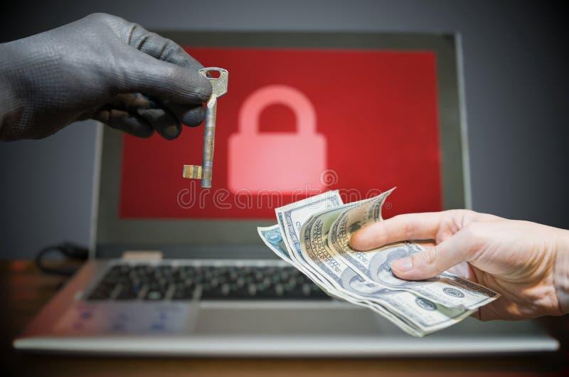 Ransomware病毒加了密在膝上型计算机的数据 免版税图库摄影