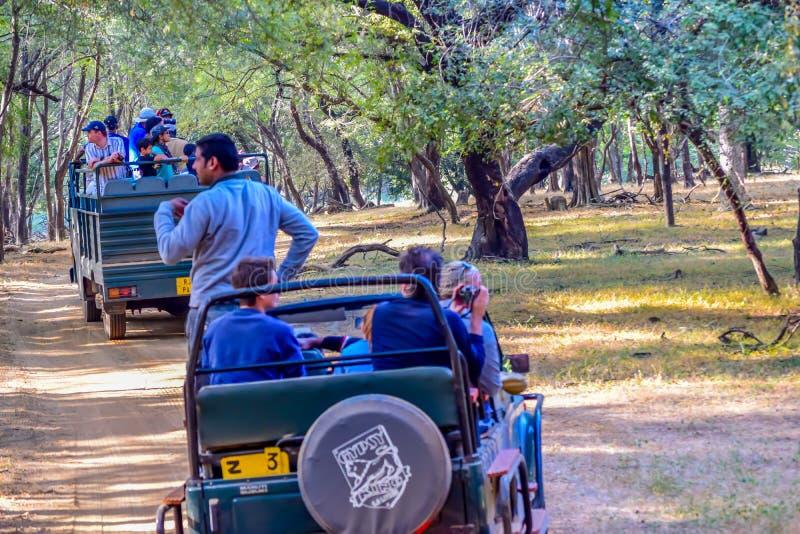 RANTHAMBORE-nationalpark, INDIA-APRIL 15: Turist- grupp på område för safarijeepkorsning fara av skogen arkivbilder