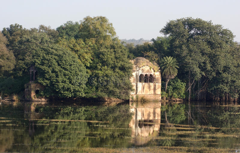 Ranthambore park narodowy obrazy stock