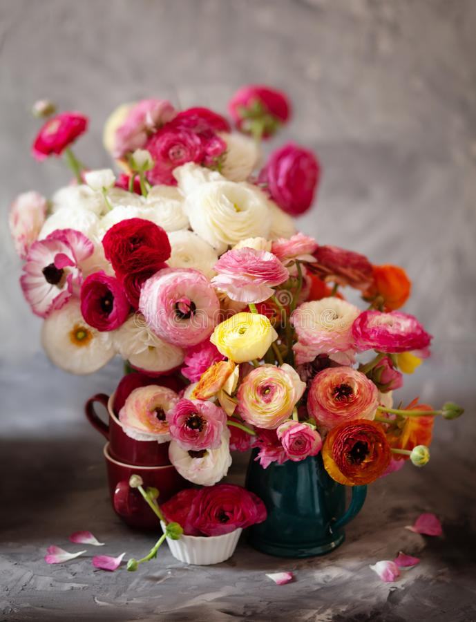 Ranunculus asiaticus or Persian buttercup bouquet in antique jug. Floral composition on grey backgound. Ranunculus asiaticus or Persian buttercup bouquet in royalty free stock image