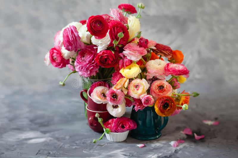 Ranunculus asiaticus or Persian buttercup bouquet in antique jug. Floral composition on grey backgound. Ranunculus asiaticus or Persian buttercup bouquet in stock photo