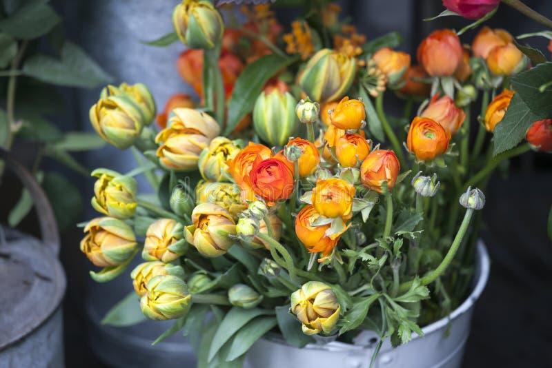 Ranunculus et tulipes pour le fond, belle fleur de ressort, modèle floral de vintage photo libre de droits