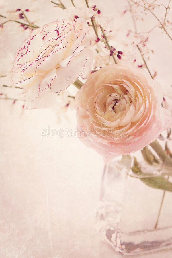 Download Ranunculus Flowers Stock Photography - Image: 24714882