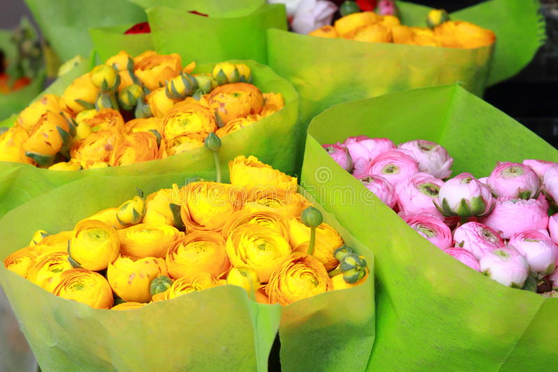 Ranunculus for sale. Yellow and pink ranunculus for sale at street flower market royalty free stock image