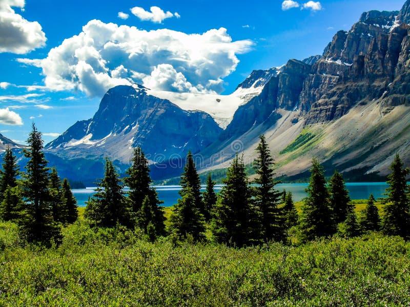 Ranunkelglaciär från den pilbågesjöBanff nationalparken arkivbild