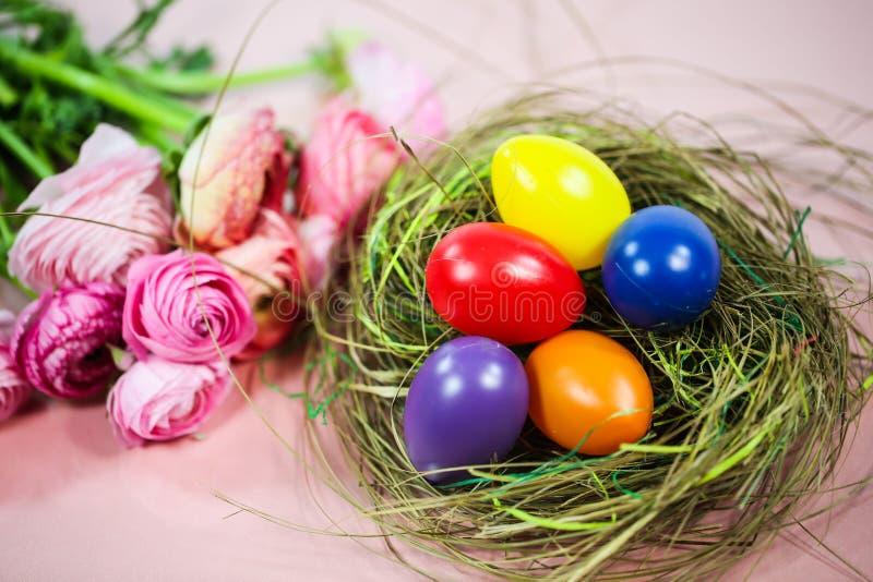 Ranunkeln en el rosa, macro, primavera, asiaticus del ranúnculo de las flores con la cesta de pascua fotos de archivo libres de regalías