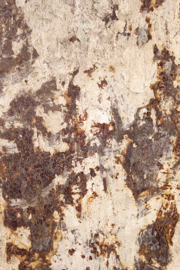 Ranurador trasero sucio (textura) fotografía de archivo