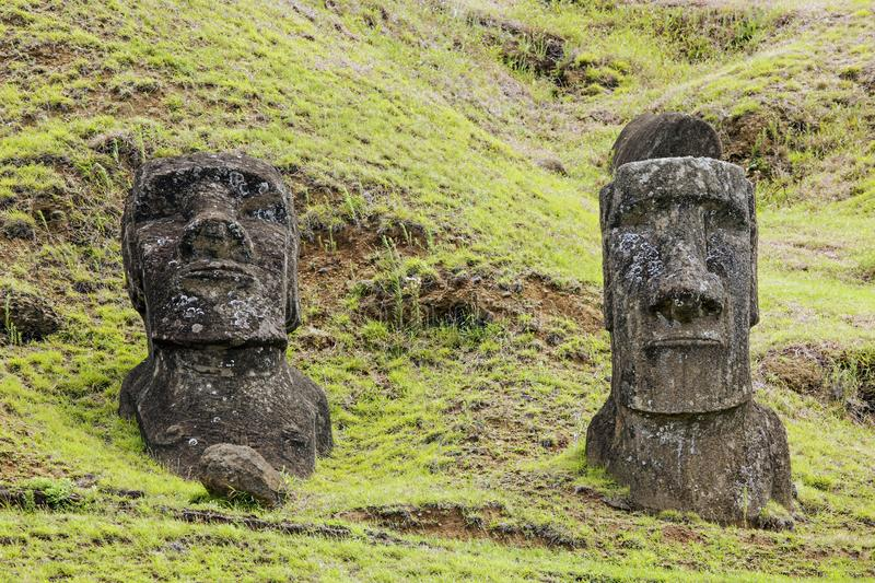 Rapa Nui National Park. Moai in Rapa Nui National Park on the slopes of Rano Raruku volcano on Easter Island, Chile royalty free stock photo