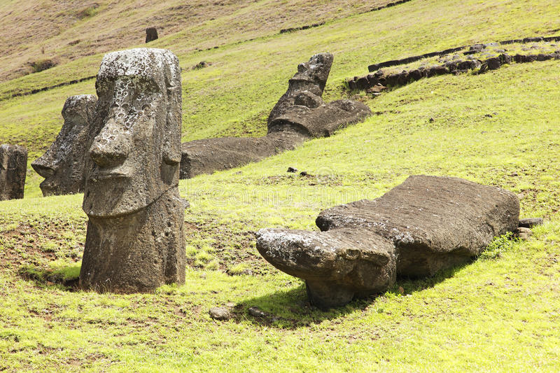 Rapa Nui National Park. Moais in Rapa Nui National Park on the slopes of Rano Raruku volcano on Easter Island, Chile royalty free stock images
