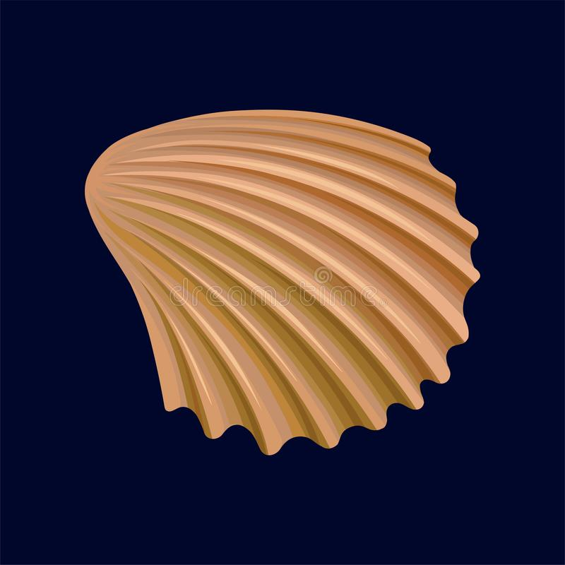 Rapana skorupa, pusta skorupa dennego mollusk wektorowa ilustracja na zmroku - błękitny tło ilustracji
