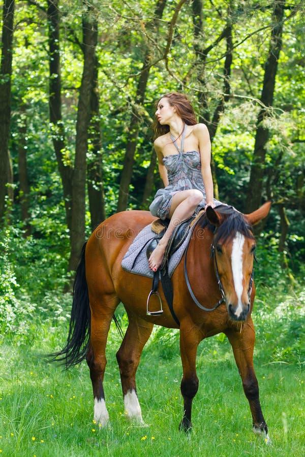 Rapariga bonita no cavalo imagem de stock