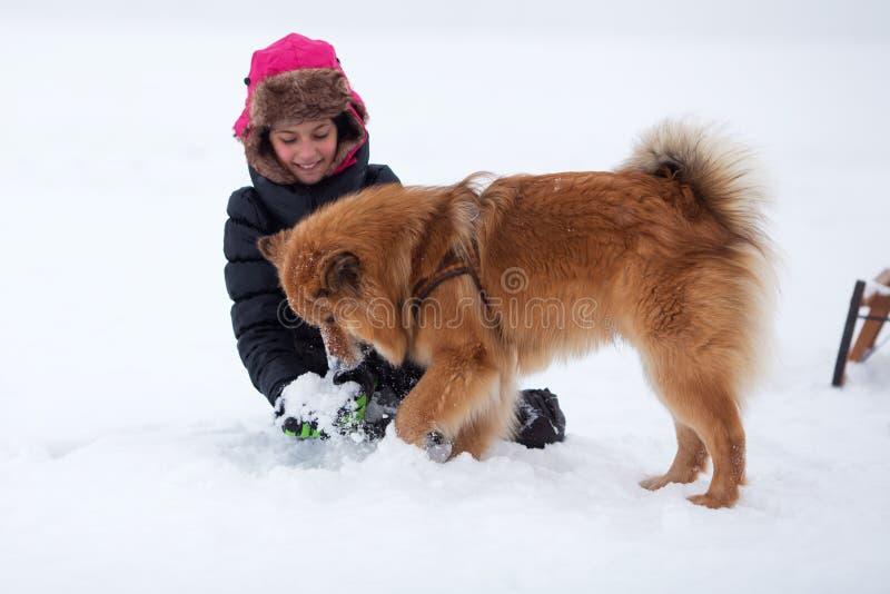 A rapariga bonito joga com um cão na neve fotografia de stock