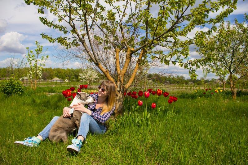Rapariga com um cão no parque fotografia de stock royalty free