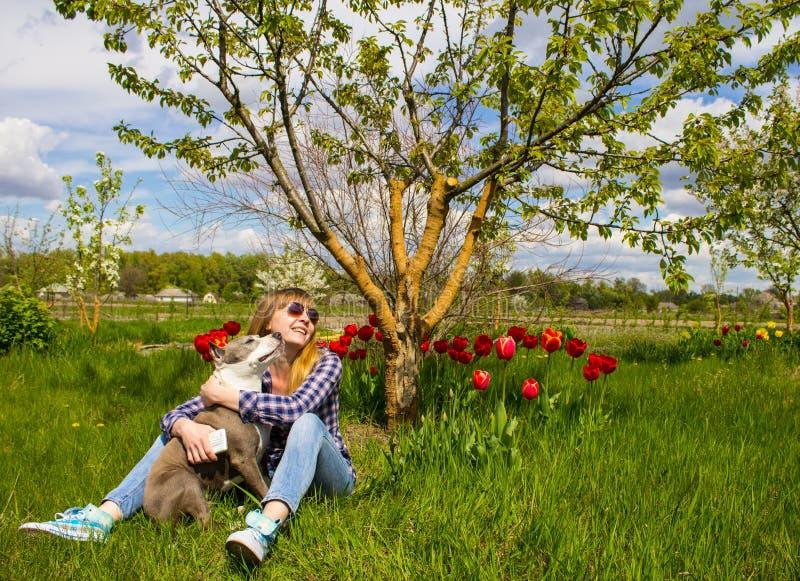 Rapariga com um cão no parque imagens de stock royalty free