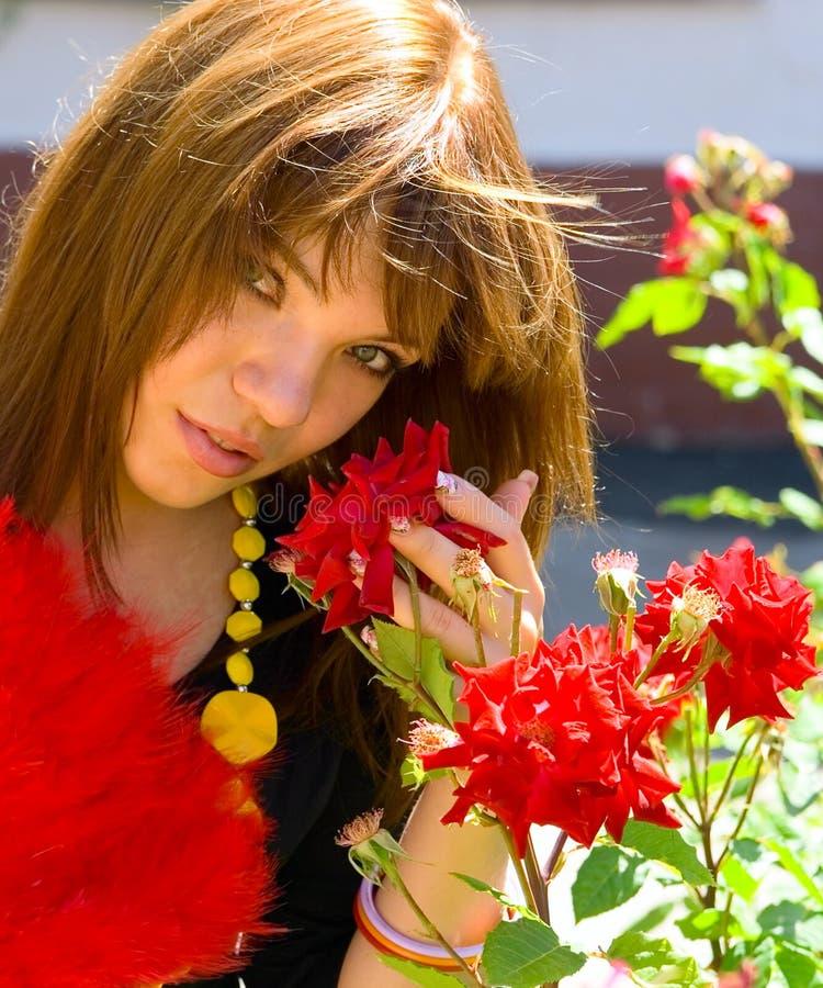 A rapariga do retrato com vermelho levantou-se imagem de stock