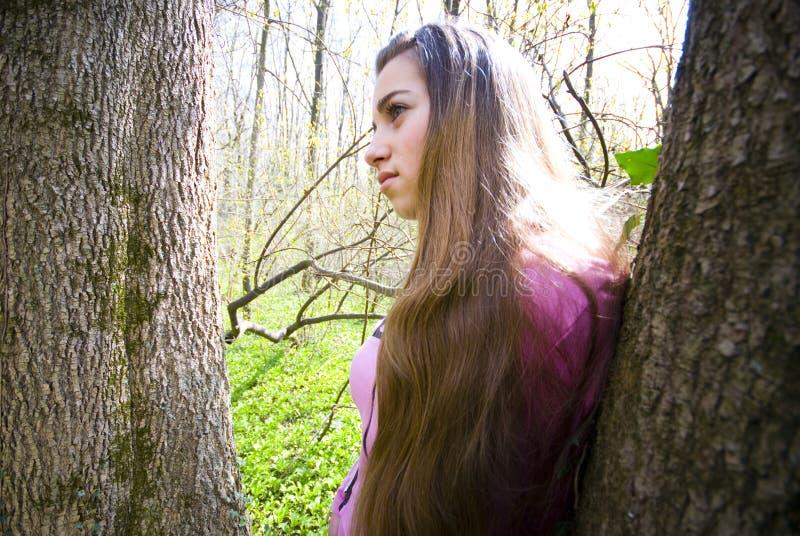 Rapariga na floresta fotos de stock royalty free