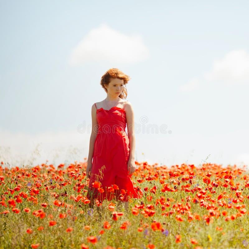 Rapariga no campo da papoila imagens de stock