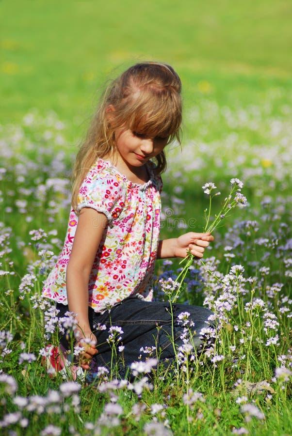 Rapariga no prado imagem de stock