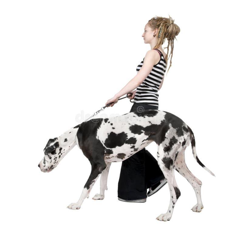 Rapariga que anda seu cão (grande dinamarquês 4 anos) ha fotos de stock royalty free