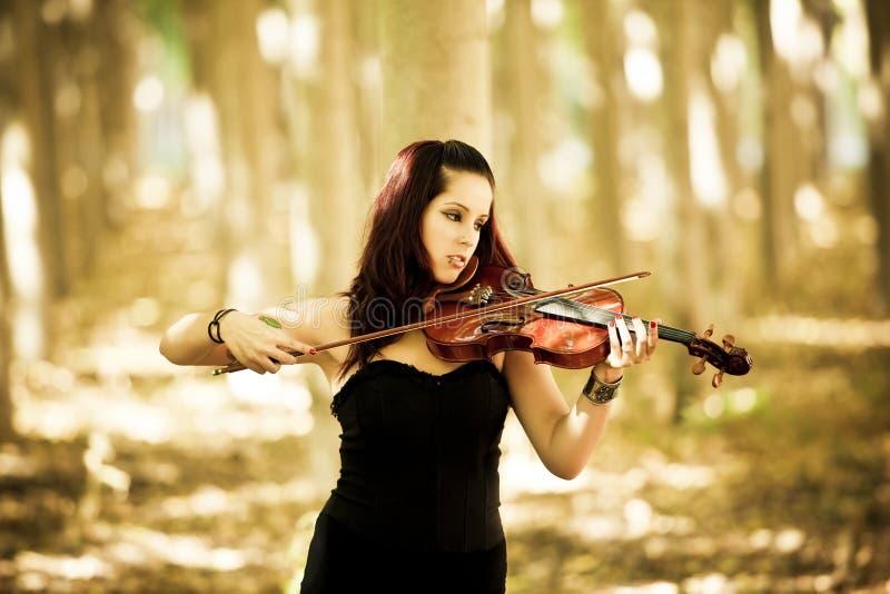 Rapariga que joga o violino imagem de stock