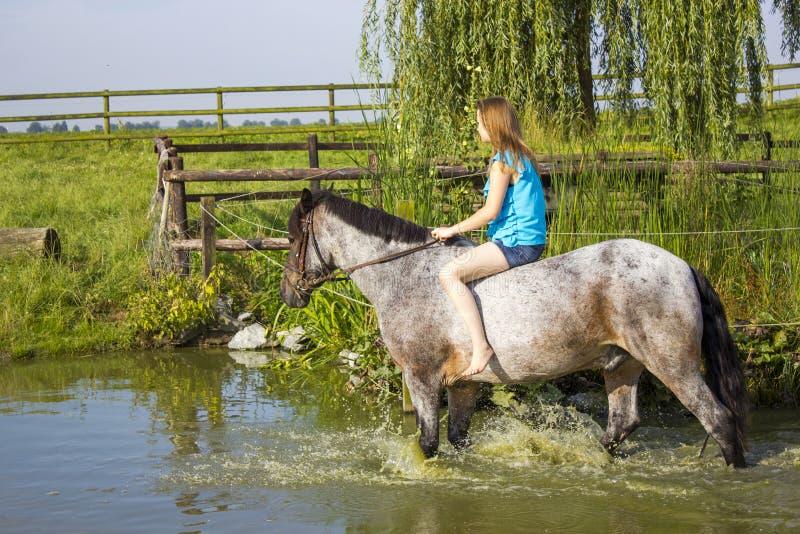 Rapariga que monta um cavalo fotografia de stock royalty free