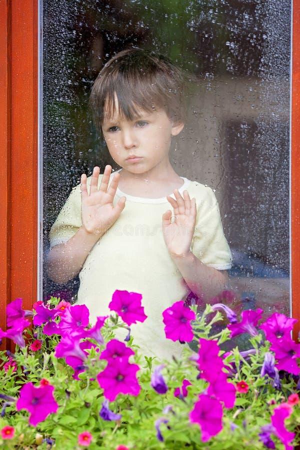 Rapaz pequeno atrás da janela na chuva fotos de stock royalty free