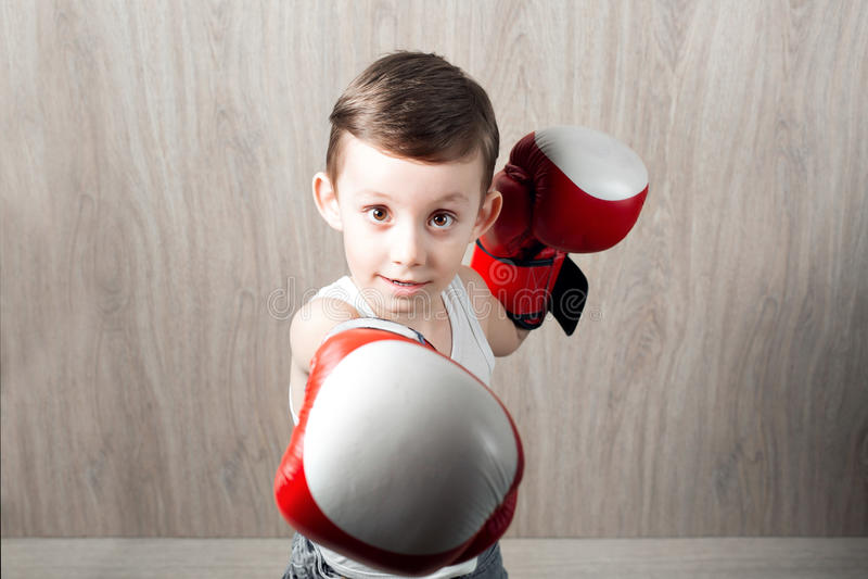 Rapaz pequeno bonito com tamanho das luvas de encaixotamento grande O retrato de uma criança desportiva contratou na caixa engana imagens de stock royalty free