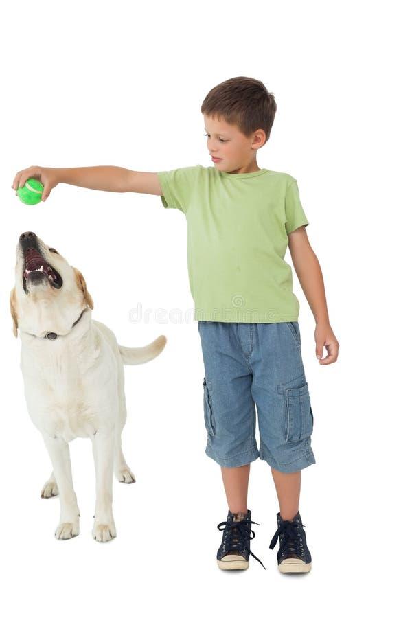 Rapaz pequeno bonito que joga a bola com seu Labrador imagens de stock