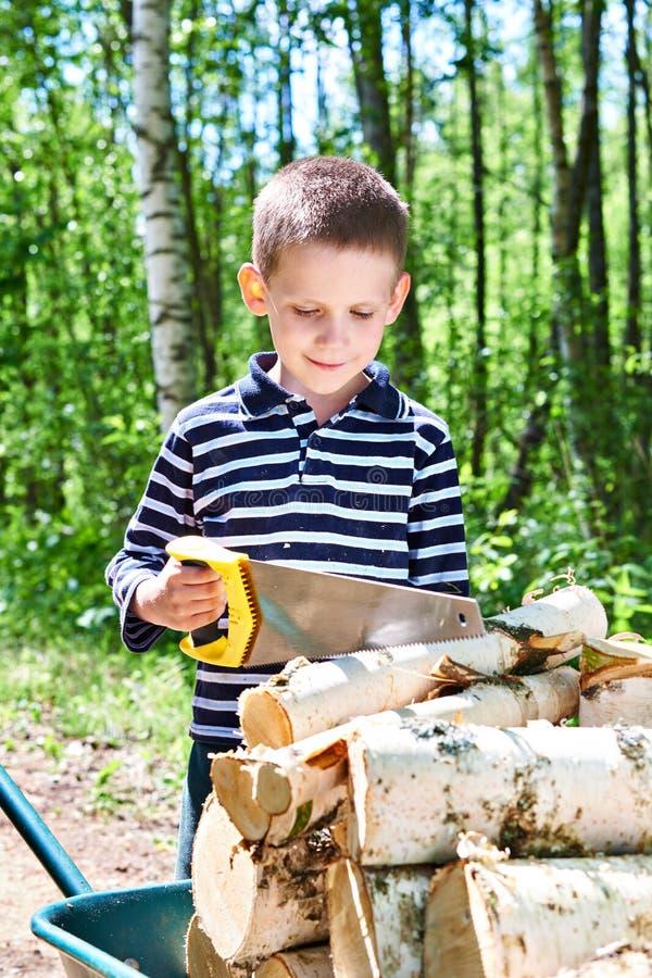 Rapaz pequeno com madeira do sawing do carrinho de mão na floresta imagem de stock royalty free