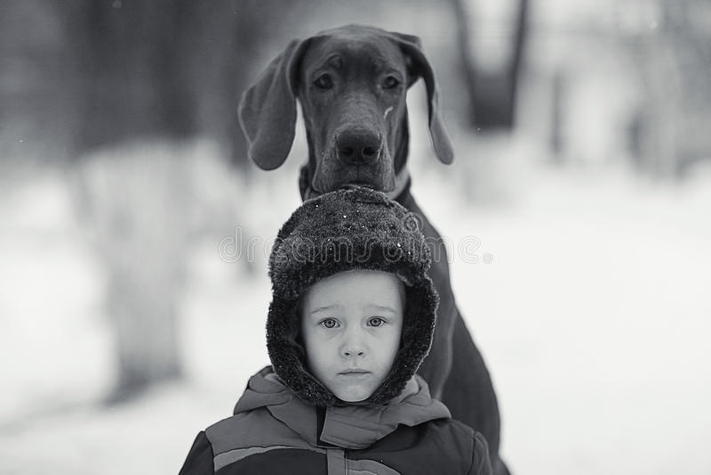 Rapaz pequeno com o cão preto grande fotografia de stock