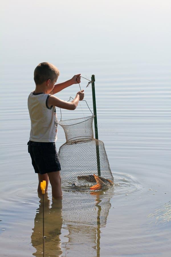 Rapaz pequeno com rede de pesca imagem de stock
