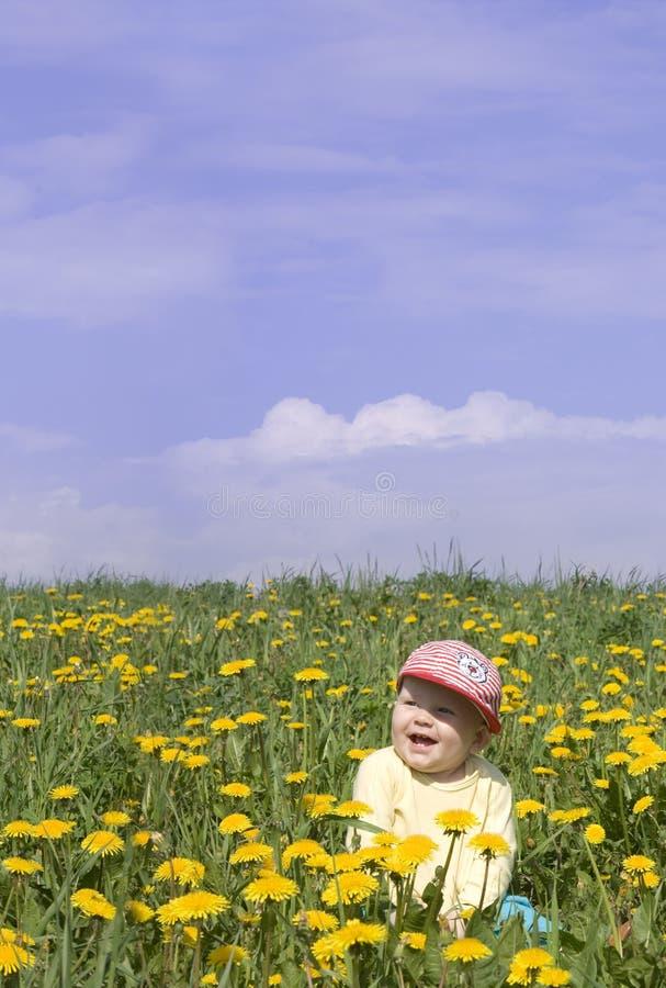 Rapaz pequeno de riso no campo fotos de stock royalty free