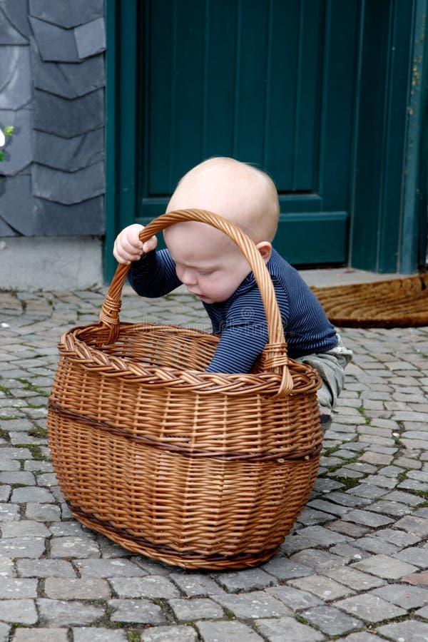Rapaz pequeno e maçãs foto de stock royalty free