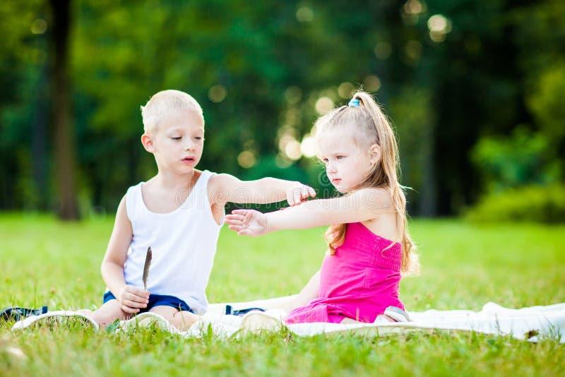 Rapaz pequeno e menina com a joaninha no parque imagem de stock
