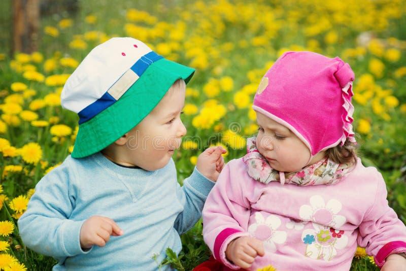 Rapaz pequeno e menina nos chapéus que sentam-se no campo com os brinquedos macios no verão imagens de stock royalty free