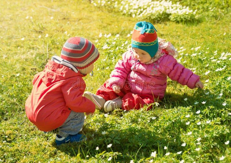 Rapaz pequeno e menina nos chapéus que sentam-se no campo com os brinquedos macios no verão fotos de stock