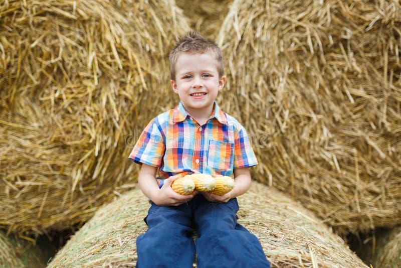 Rapaz pequeno em um campo fotos de stock royalty free