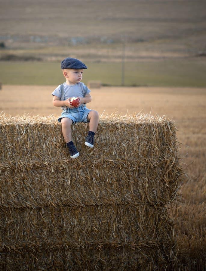 Rapaz pequeno em uma pilha de feno imagens de stock