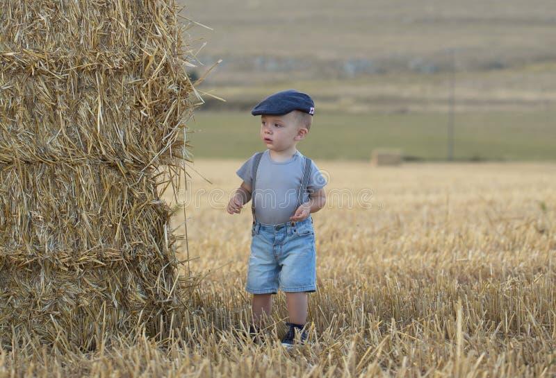 Rapaz pequeno em uma pilha de feno imagem de stock royalty free