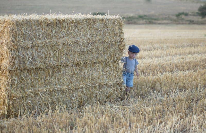 Rapaz pequeno em uma pilha de feno fotos de stock