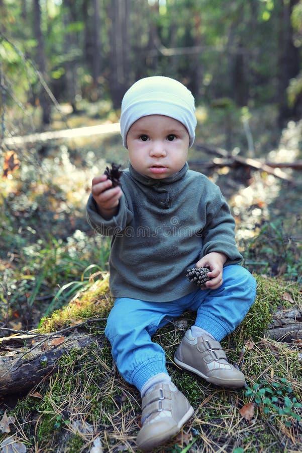 Rapaz pequeno engraçado que joga com os cones do pinho que sentam-se no assoalho fotografia de stock royalty free
