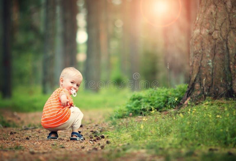 Rapaz pequeno feliz na floresta imagem de stock royalty free