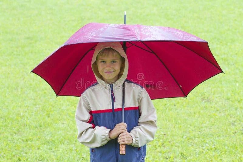 Rapaz pequeno feliz sob um guarda-chuva na chuva imagens de stock