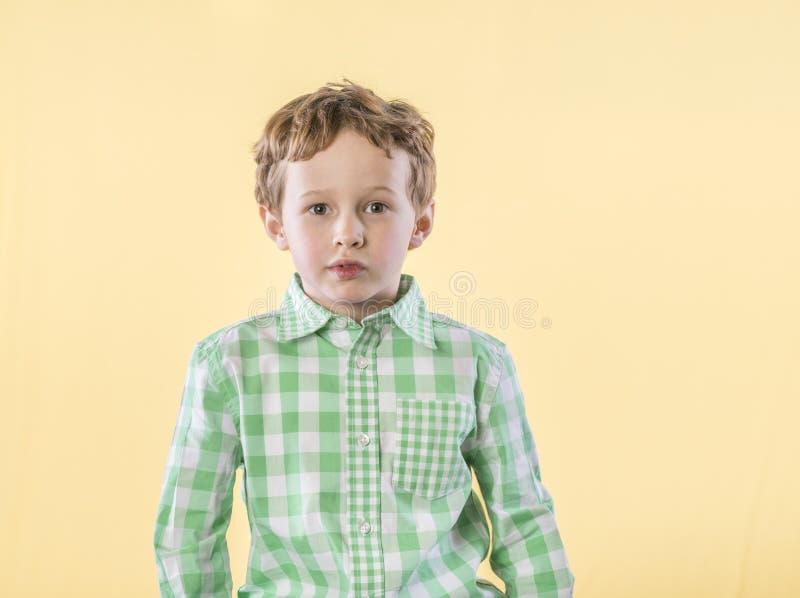 Rapaz pequeno na camisa de manta verde com expressão pensativa imagens de stock
